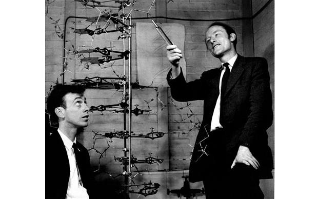 Modelo de doble hélice del ADN | Wikimedia Commons