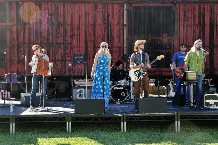 artichoke band in concert