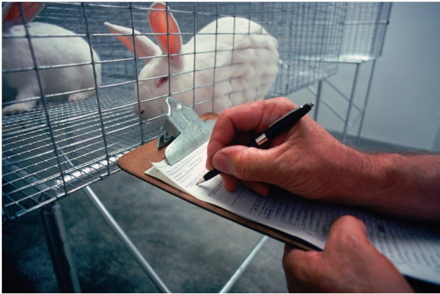 «La ciencia del animal de laboratorio» por Juan Rodríguez