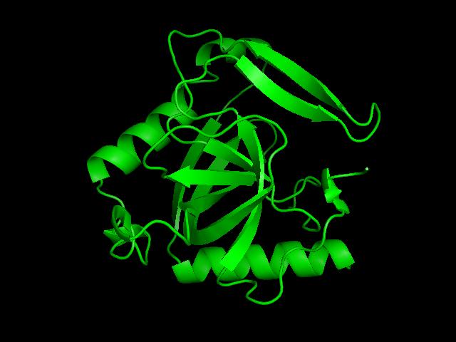 Cuando las proteínas son robots