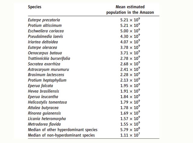 Especies hiperdominantes los rboles que m s abundan en for Cuantos tipos de arboles hay en el mundo