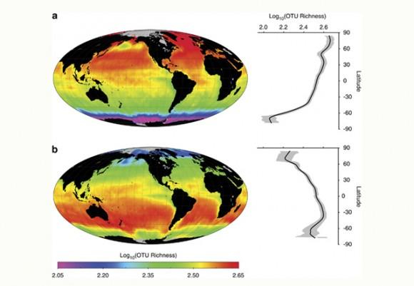 Mapa de predicción global de bacterias. Imagen: Ladau et al. (2013)