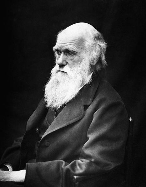 Día de Darwin 2014