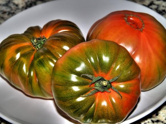 Tomate Raf (wikipedia)