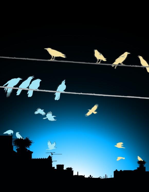 Figura 4. Representación esquemática de la relación entre el origen de las interneuronas y su distribución final en la corteza cerebral. Aquellas interneuronas (aves) que nacen de un mismo progenitor (nido) terminan ocupando posiciones similares en las capas de la corteza cerebral (cables).