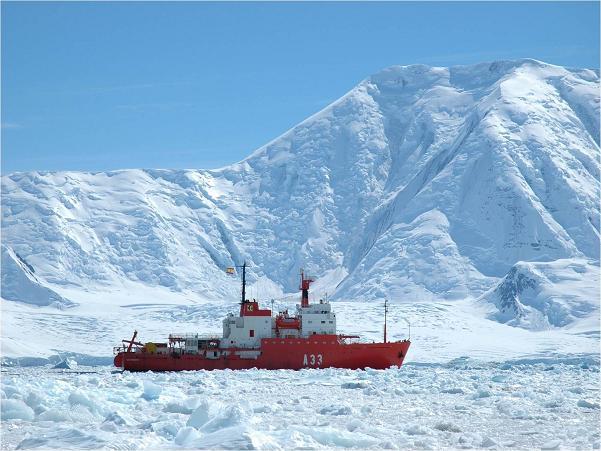 Activa tu neurona – Antártida