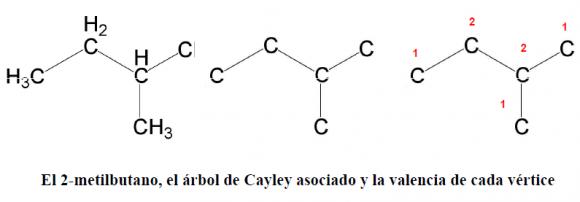 Cayley 2