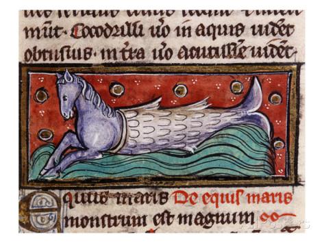 Equus maris (el caballo de mar). Ilustración de De animalibus de Alberto Magno