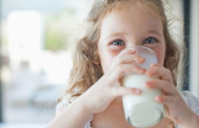 Hacia una leche que no produzca alergia