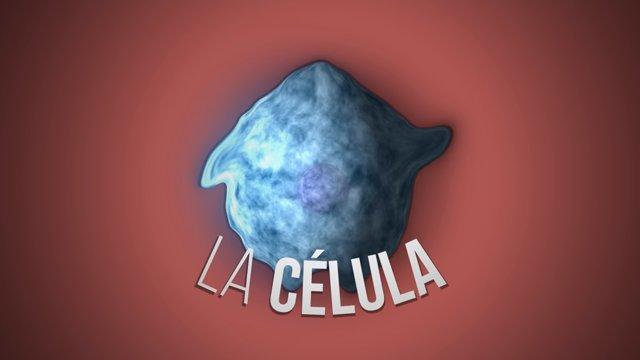 Ciencia Express: la célula