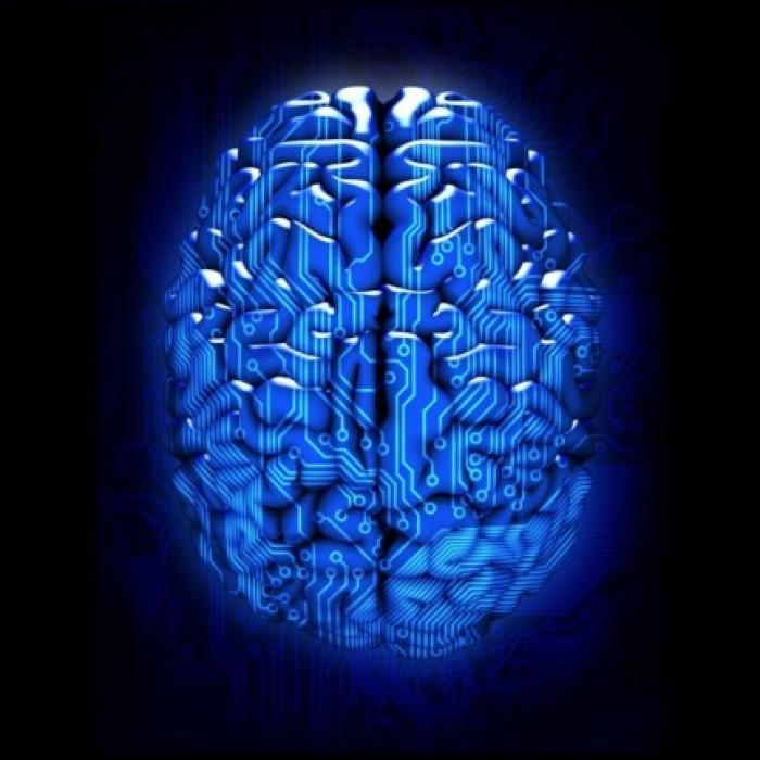 Circuitos neuromiméticos capaces de aprender y olvidar