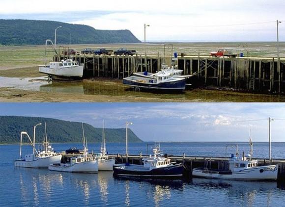 Las mareas en la Bahía de Fundy (fuente)
