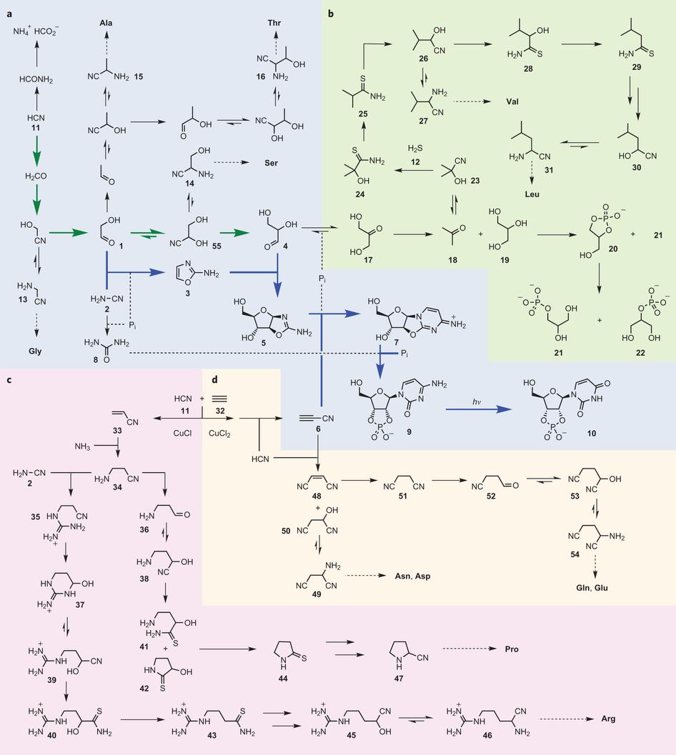 Un origen químico de la vida elegantemente simple