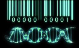 Resultado de imagen para Incógnitas de nuestro ADN
