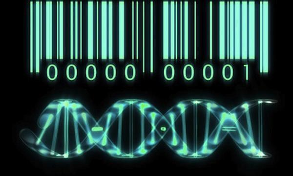 ¿En manos de quién ponemos nuestro genoma?