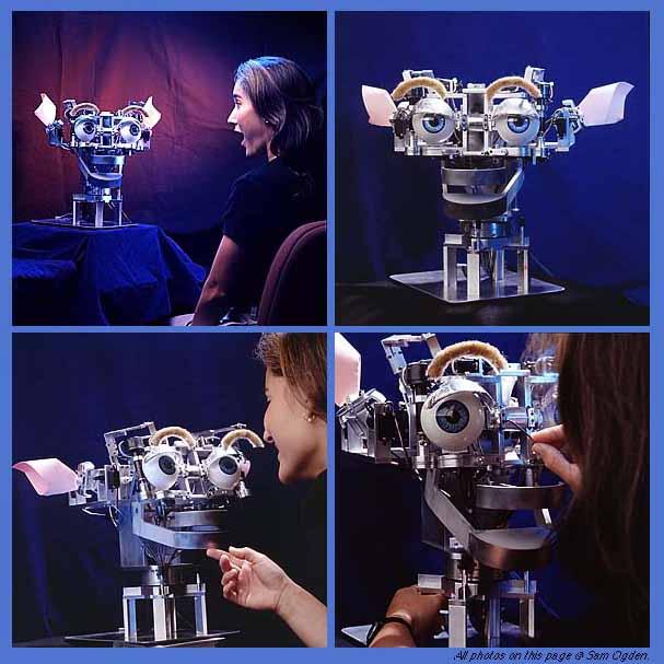 Máquinas inteligentes (II): Inteligencia artificial y robótica