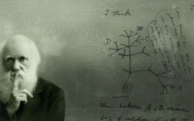 ¿Cómo llegó el darwinismo a España? Los introductores - Odón de Buen