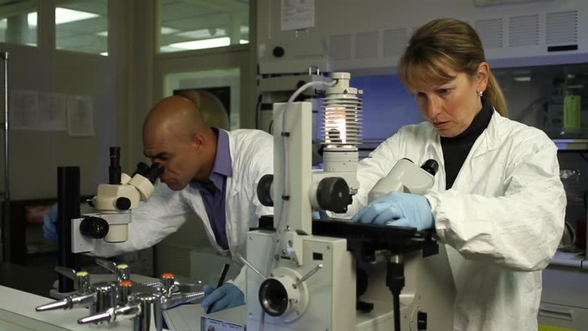 Los microscopios (II)