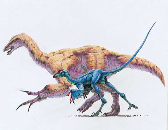 feathered_dinosaurs_by_sharkeytrike-d4zo517