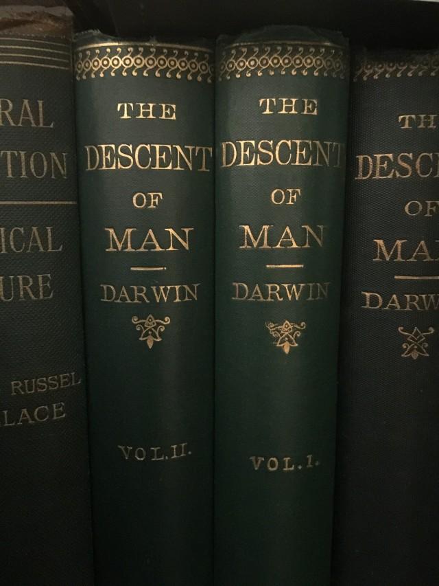 1ª edición original The Descent of man (2 volúmenes – J. Murray 1871) Imagen Javier Peláez