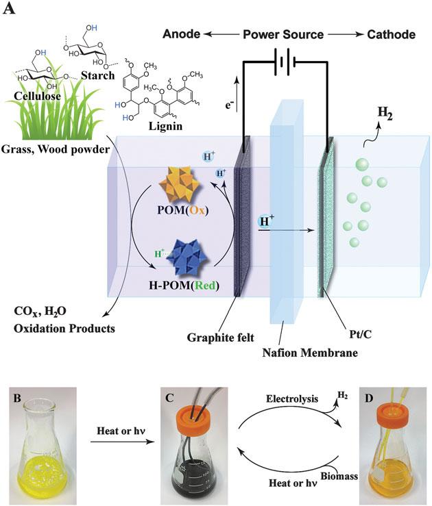 A) Esquema del proceso de conversión electroquímica. La dispersión de biomasa-POM B) antes de iniciar el proceso, C) cambia de color cuando se calienta o expone a la luz del sol, D) tras la obtención del hidrógeno.