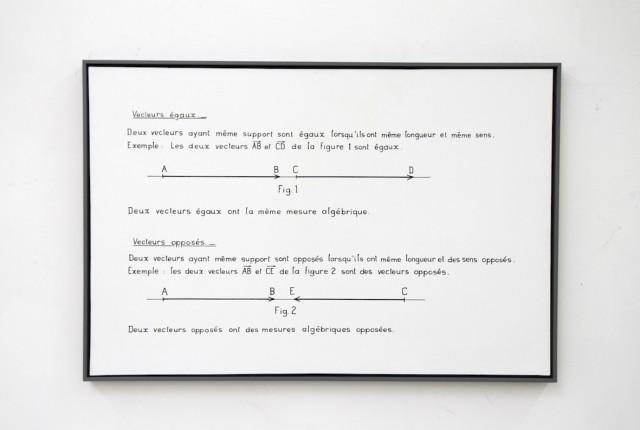 Bernar Venet,Vectores iguales, vectores opuestos, tinta y acrílico sobre lienzo, 1966