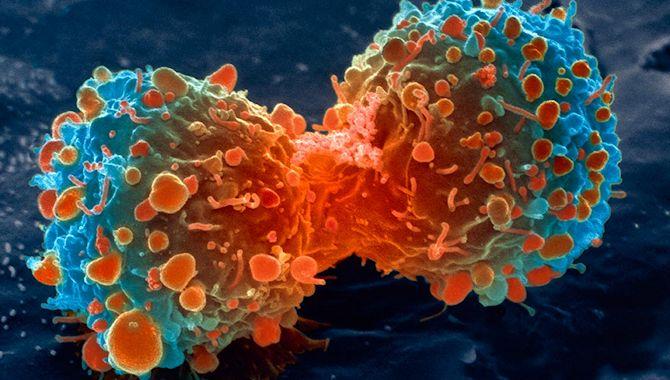 Cazando células cancerosas una a una con resonancia plasmónica