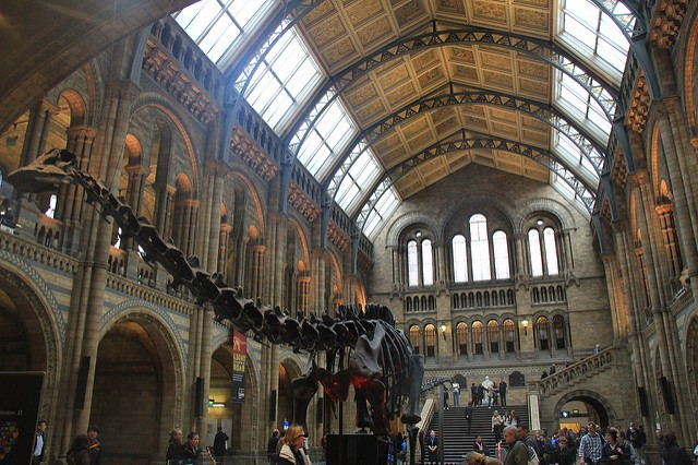 Natural History Museum de Londres | Imagen Javier Peláez