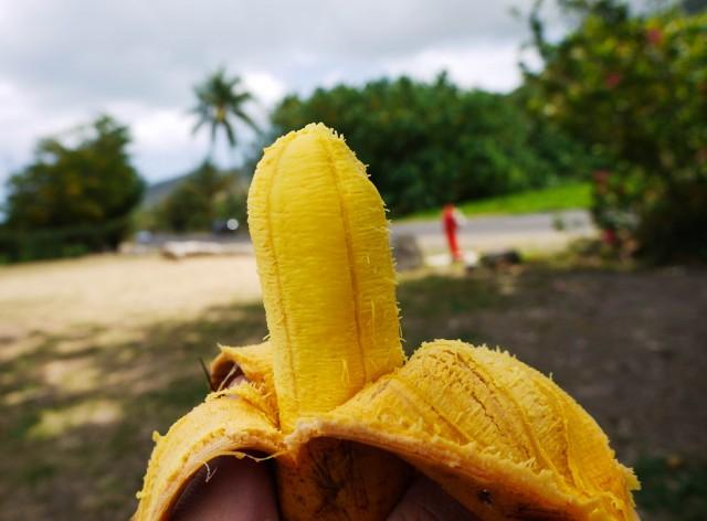 Variedad de plátano Fe'i