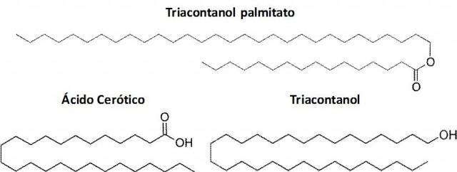 Imagen 3. El triacontanol palmitato (C15H31COOC30H61), el ácido cerótico (CH3(CH2)24COOH), y el triacontanol (C30H61OH), son compuestos mayoritarios en la cera de abeja y le otorgan sus peculiares características
