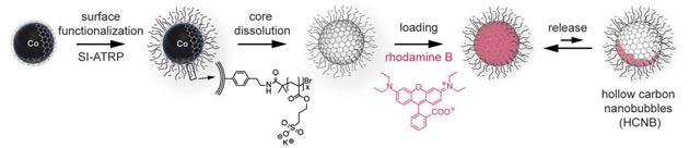 Proceso de obtención y funcionalización de la nanoburbuja.