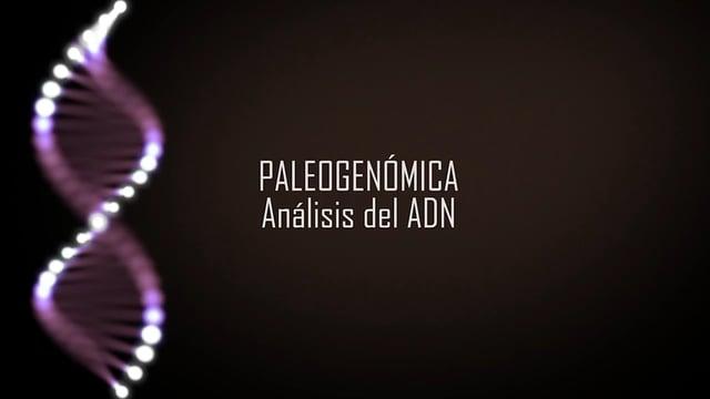 Paleogenómica, análisis del ADN