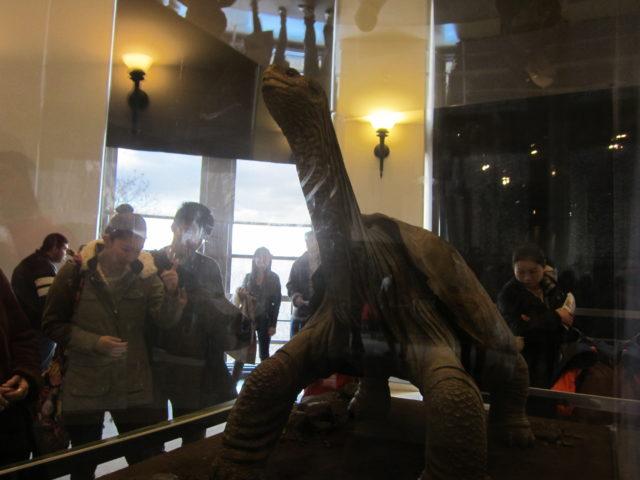George en el American Museum of Natural History (NY)