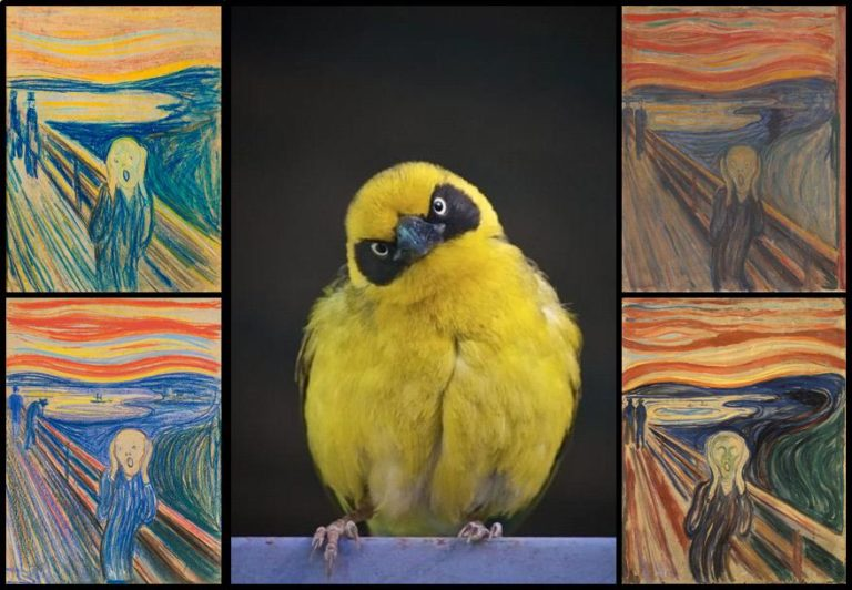 Munch y la cagada de pájaro