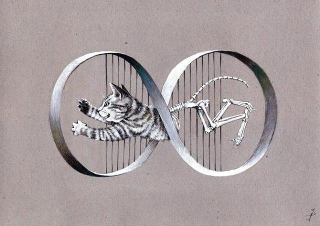 Schrödinger's cat playing with Möbius band. ©Anastasis.