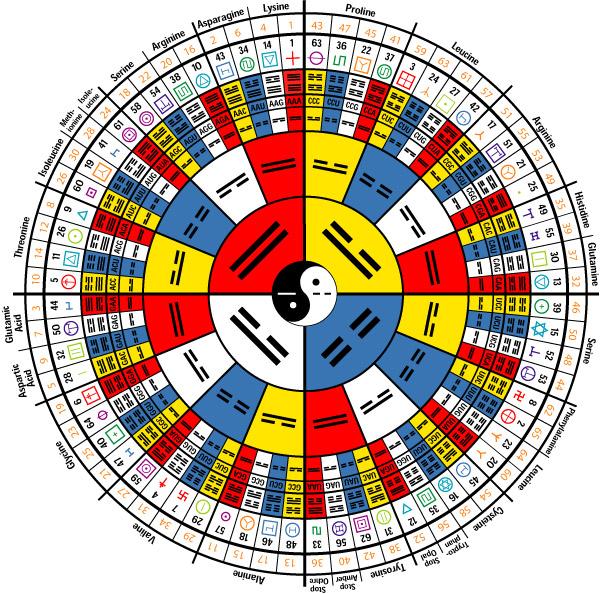 """#Naukas16 Del """"I Ching"""" a la comprensión del cerebro"""