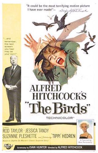 """El caso de """"Los Pájaros"""""""