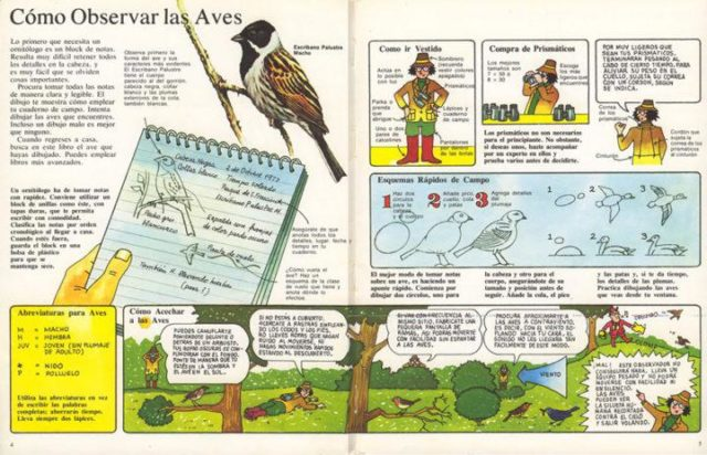 La Senda de la Naturaleza: Pájaros, Malcom Hart, ediciones Plesa, 1986