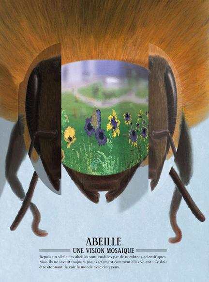 Zoóptica. ¿Sabes cómo ven los animales? Guillaume Duprat, SM, 2014