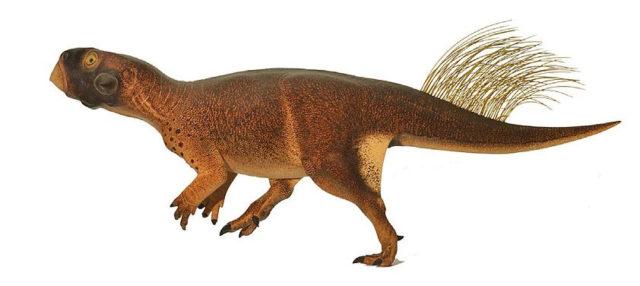 Psittacosaurus. Imagen de Vinther et al. 2016