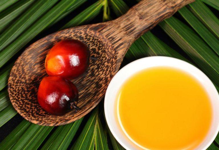 Si te preocupa el aceite de palma, que sea por las razones adecuadas