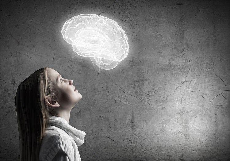 Sistemas nerviosos: las áreas sensoriales