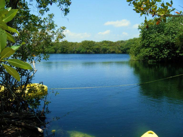 Ox Bel Ha, un ecosistema tropical alimentado por metano