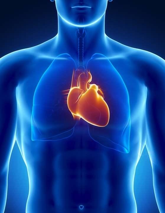 condiciones cardiovasculares
