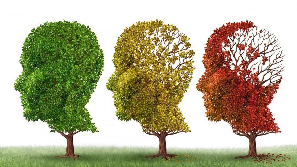 Prevenir y tratar la enfermedad de Alzheimer: Una visión moderna — Cuaderno  de Cultura Científica