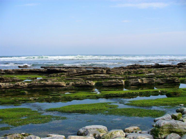 Nuevos retos energéticos: la energía de las olas