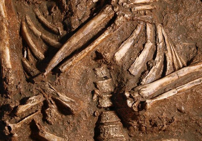 Los neandertales respiraban de