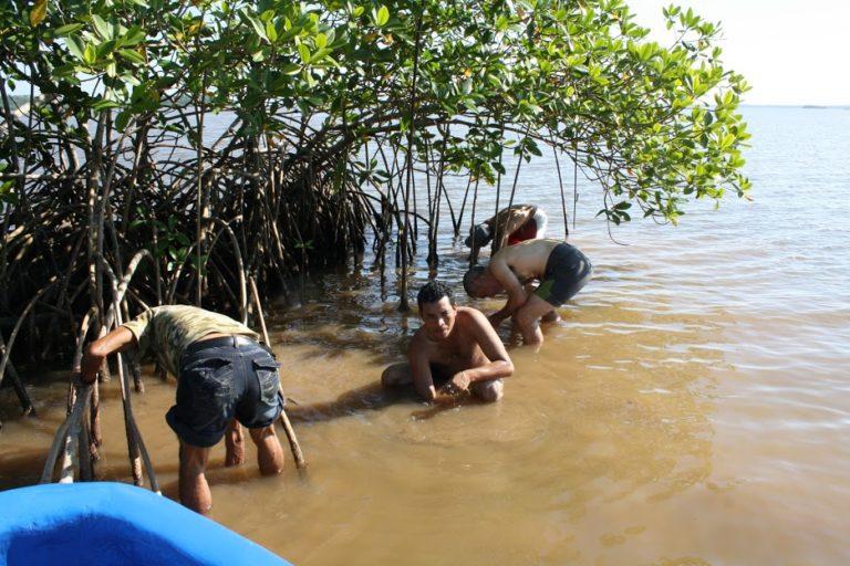Buscando centinelas ambientales para las costas de Nicaragua