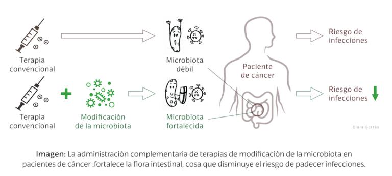 Bacterias contra bacterias