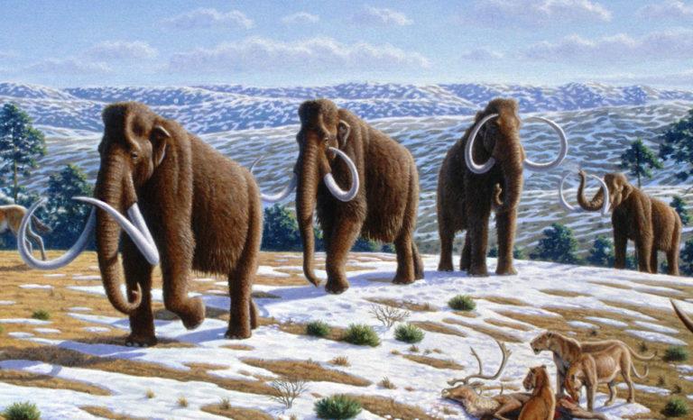 Más allá de los mamuts